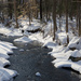 More fresh snow by mccarth1