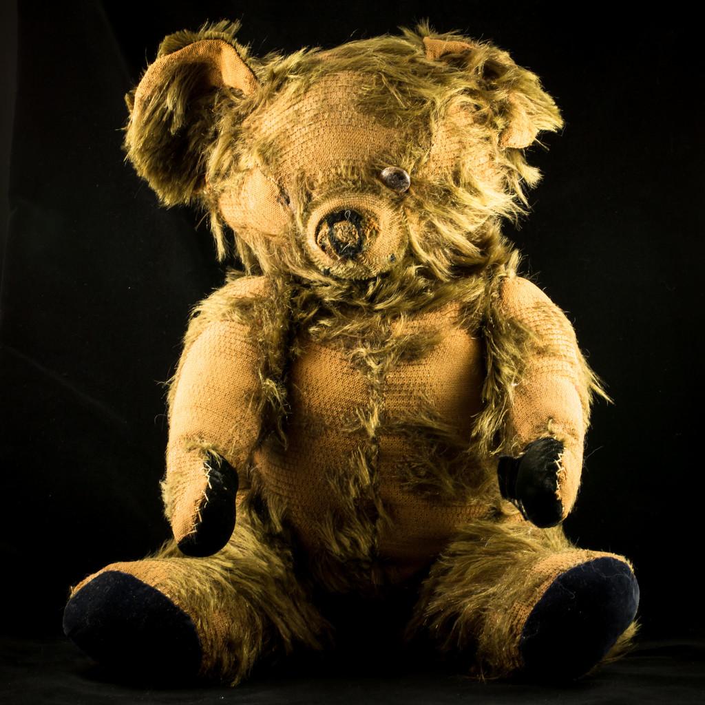 Trashy Teddy by lindasees