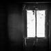 Cobweb curtains by overalvandaan