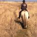 The Savannah Ride