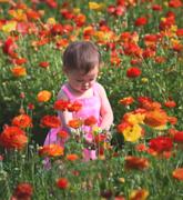 22nd Mar 2015 - Tending Her Flowers