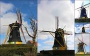 23rd Mar 2015 - Windmill : `` de Jonge Johannes``  Young John