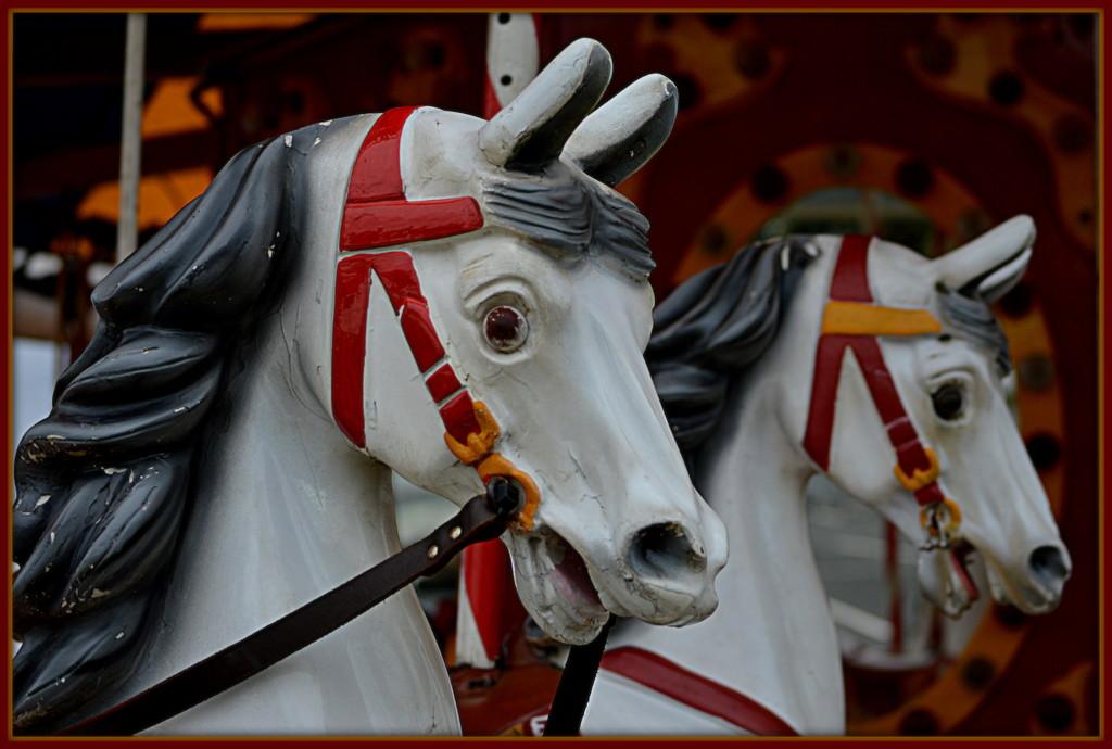Snowy White Horses... by nickspicsnz