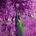 Purple Liberty by parisouailleurs