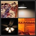 Pieces of my room by pfmandeville