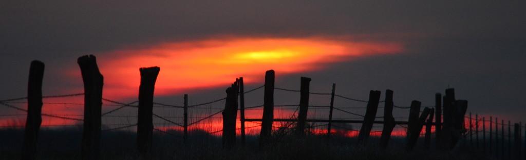 Slim Sunrise by kareenking