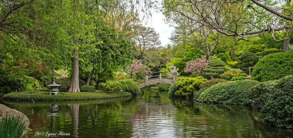 Spring at the Gardens by lynne5477