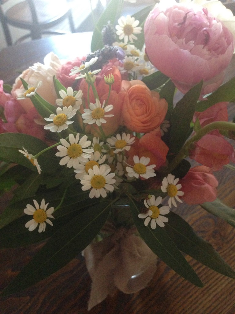 blooms from my bestie by bcurrie