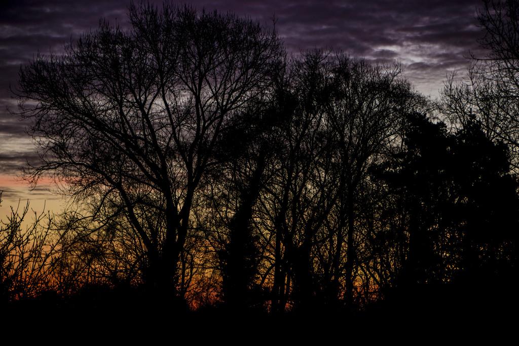Dawn revisited by shepherdman