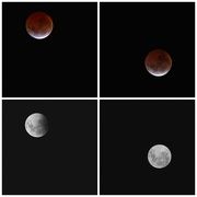5th Apr 2015 - Lunar eclipse April 2015