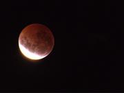 5th Apr 2015 - april 5 blood moon