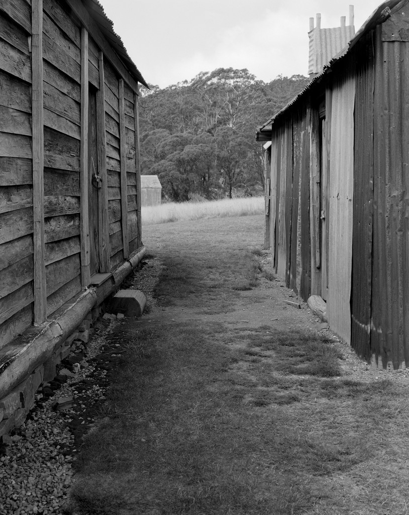Between house and shed by peterdegraaff
