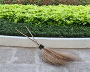 3rd Apr 2015 - Vietnamese brooms