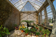 6th Apr 2015 - 091 - Orangery at Montacute House