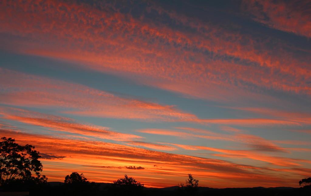 A Rare Sunset by terryliv
