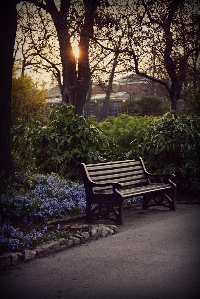 Evening Stroll by newbank