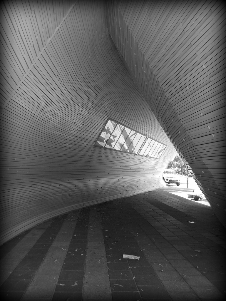 lines by cruiser