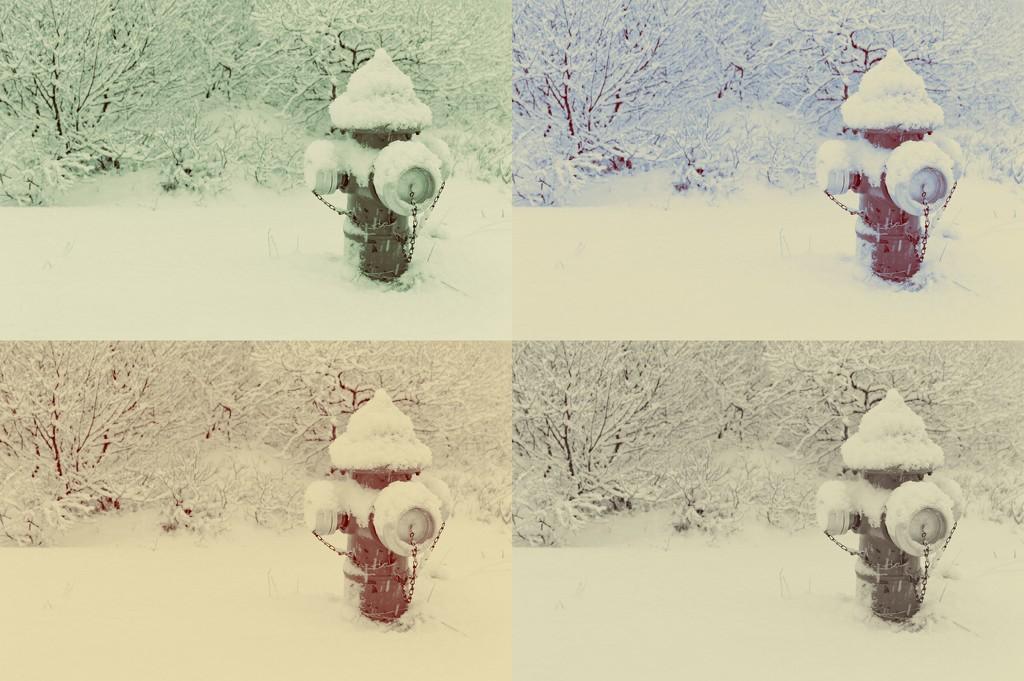 Hydrant Collage by darrenboyj