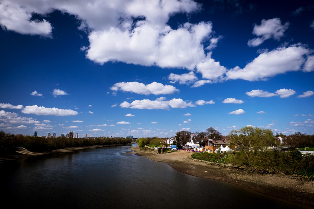 Day 101, Year 3 - Sun Shines Down On Mortlake by stevecameras