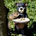 Thanks for sharing Mr. Bear! by fayefaye