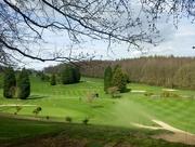 12th Apr 2015 - Apr 12: Golf