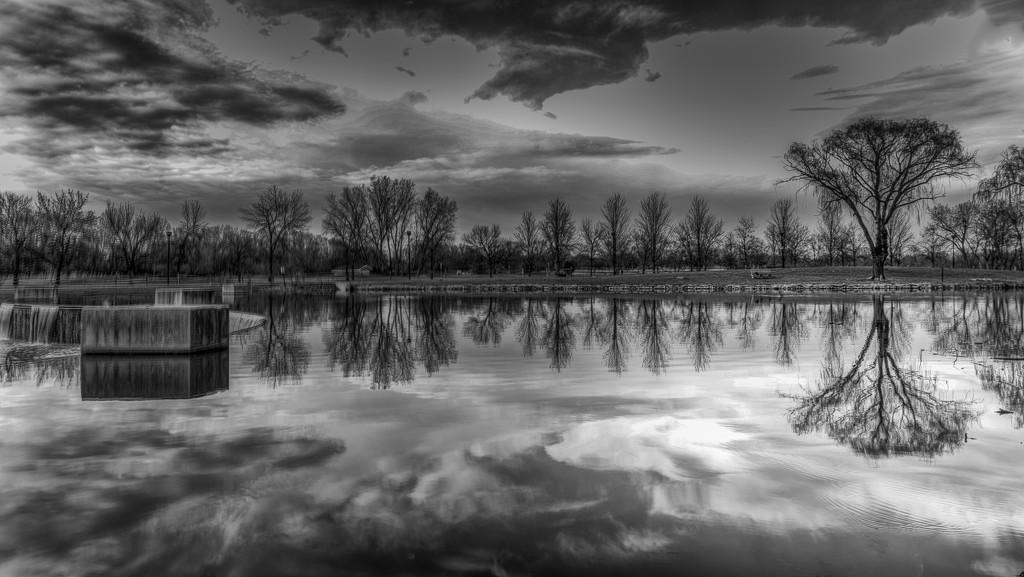 Reflections by taffy
