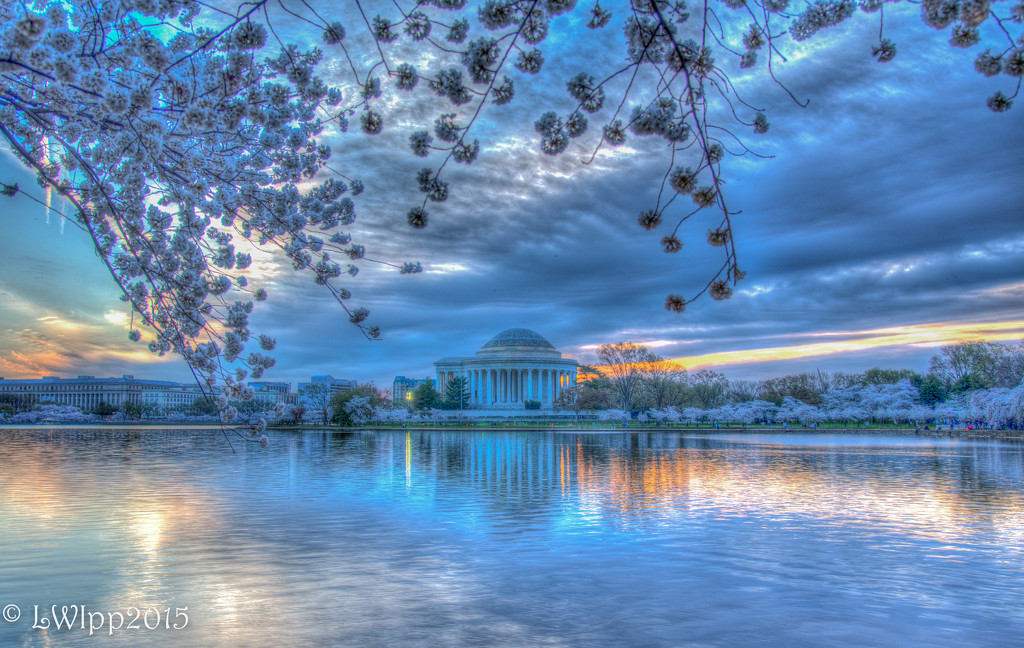 Surreal Sunrise At The Blossoms by lesip