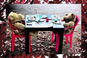 17th Dec 2018 - teddybear picnic