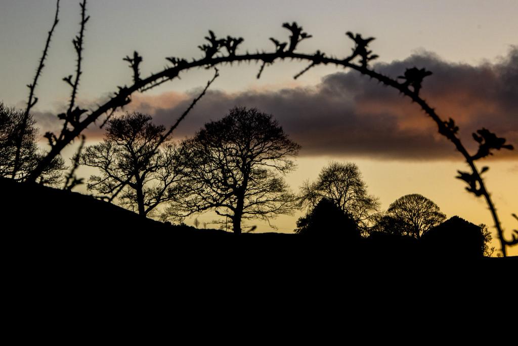 Peaceful dusk? by shepherdman