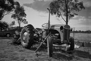 "16th Apr 2015 - ""Life on the Farm""..."