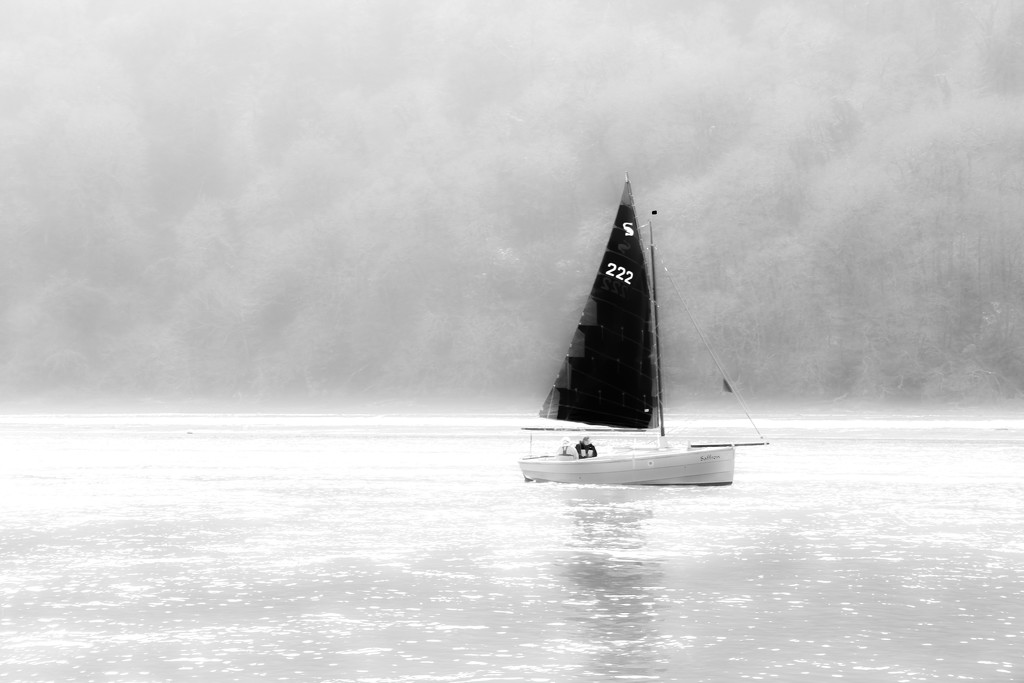 Sailing by rachelwithey