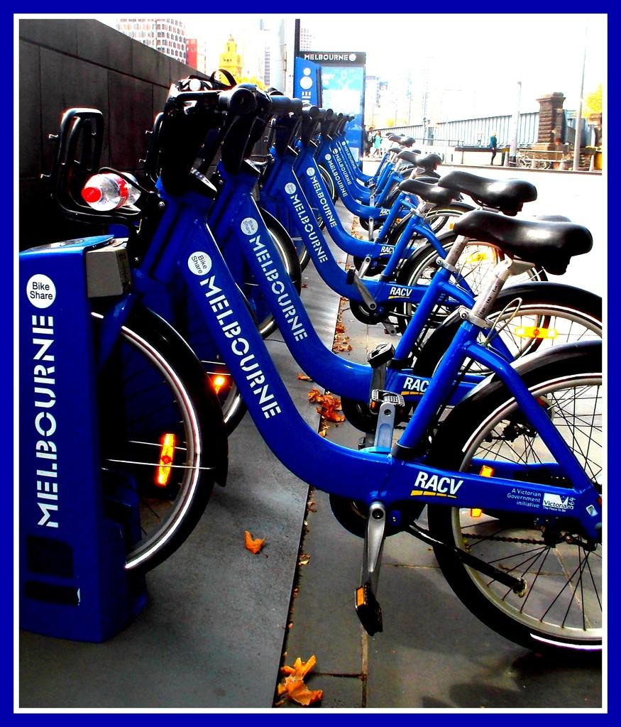 fancy a bike ride? by cruiser