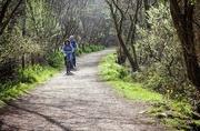 17th Apr 2015 - Cycle Path