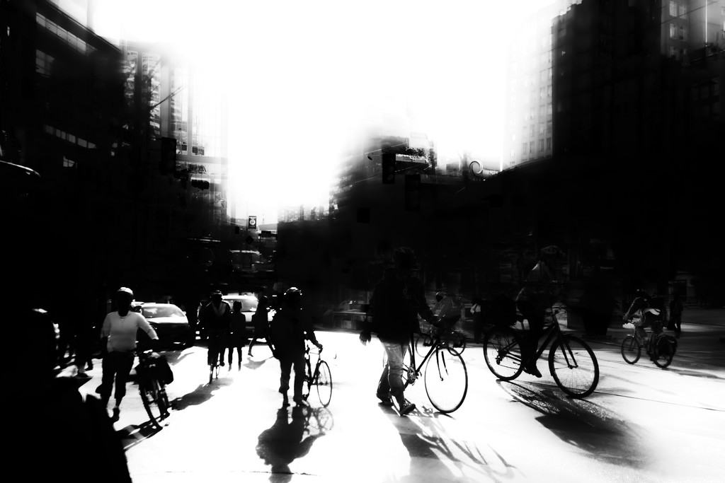 barrage of bikes by northy