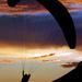 Paragliding by yolanda