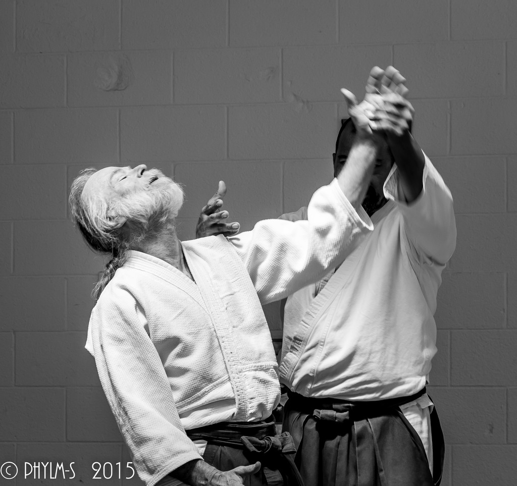 Aikido  by elatedpixie