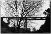 18th Apr 2015 - Waitete Viaduct..