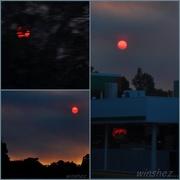 19th Apr 2015 - red sun collage