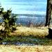 Cooks Bay -Lake Simcoe