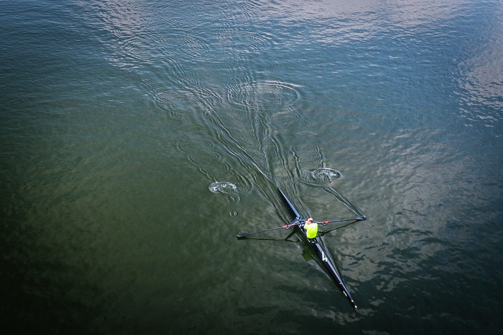 Day 098, Year 3 - Mortlake Morning, Rowing The River by stevecameras
