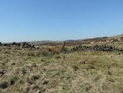 18th Apr 2015 - A moorland walk