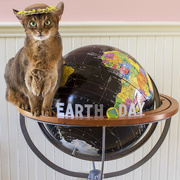 22nd Apr 2015 - Earth Day
