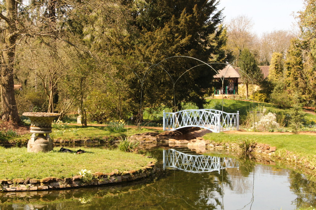 Swiss garden by busylady