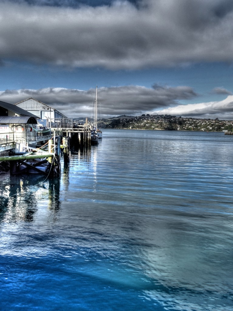 Otago Harbour on a GOOD day! by maggiemae