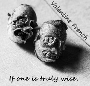 23rd Apr 2015 - if one is truly wise