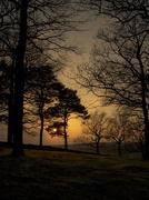 23rd Apr 2015 - Evening Light