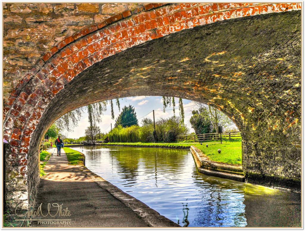 A Walk By The Canal by carolmw