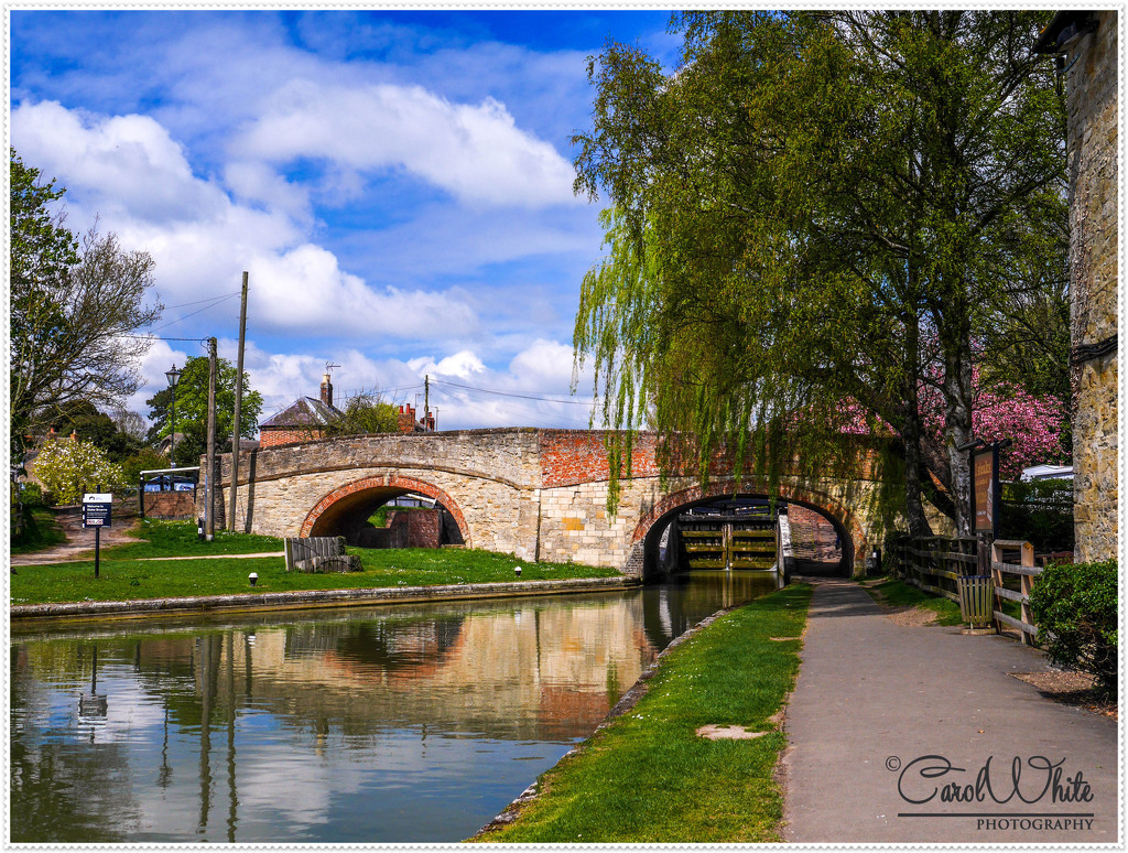 Canal Bridge at Stoke Bruerne by carolmw