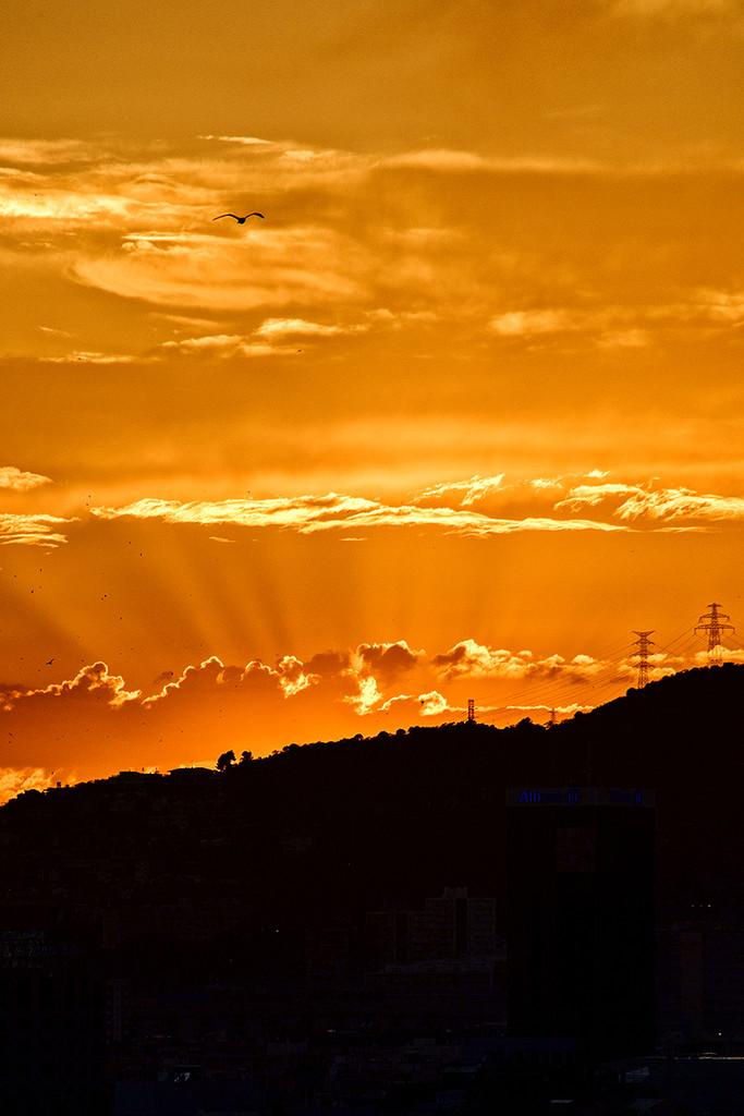 Sunset by jborrases