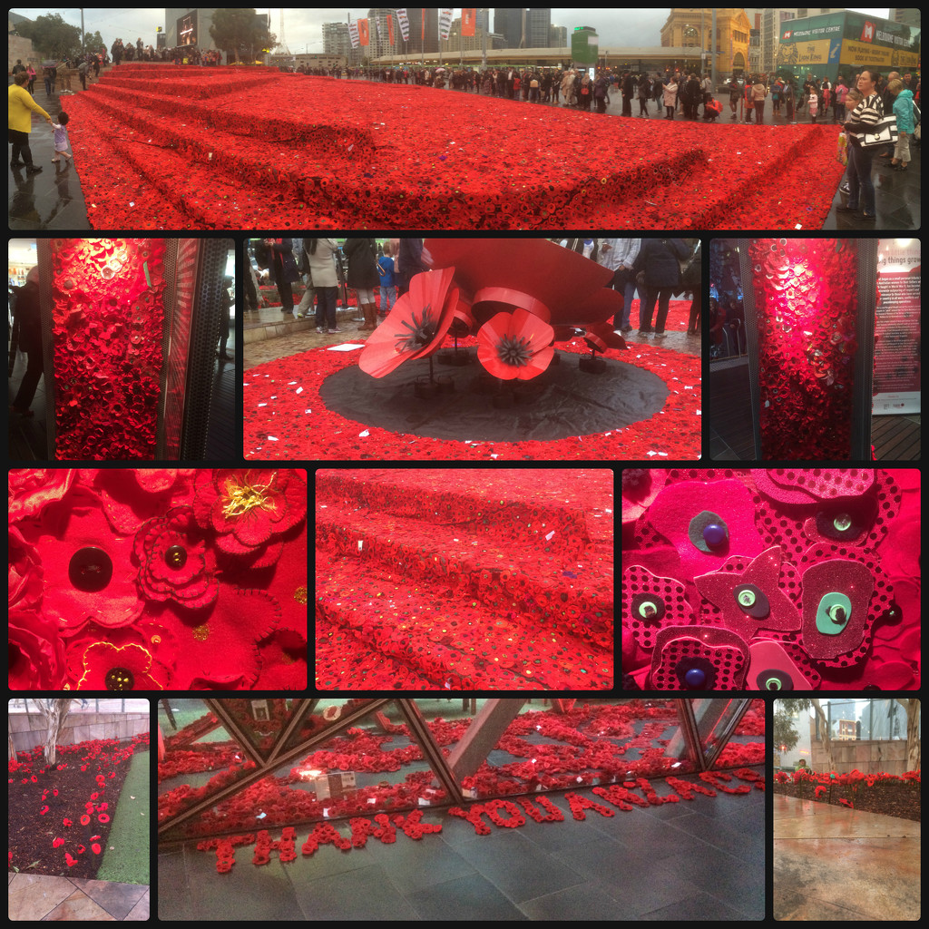 5000 Poppies  by alia_801
